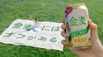 戸田恵梨香 サントリー 金麦〈糖質75%オフ 「金麦にはオフがある」篇 0011