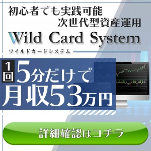 WildCardSystem(ワイルドカードシステム)