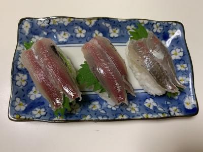 ウルメイワシとアジの握り寿司