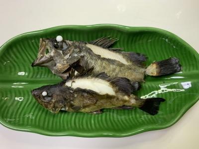 本日の我が家の兄妹猫の朝食は釣りたてのメバルを焼いたもの