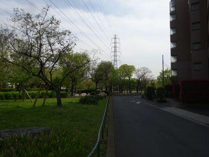 mini_DSC09244.jpg