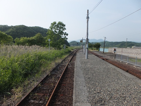 hongiri (6)