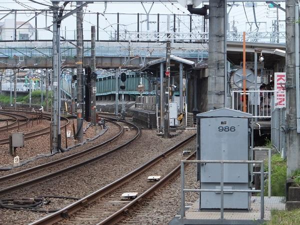 sakurabasi (8)