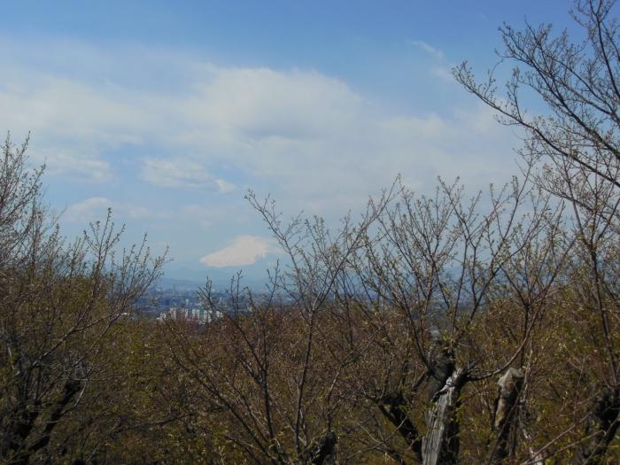 六国見山~富士