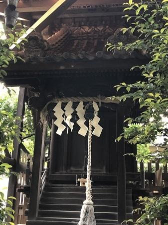 yagiri (7)