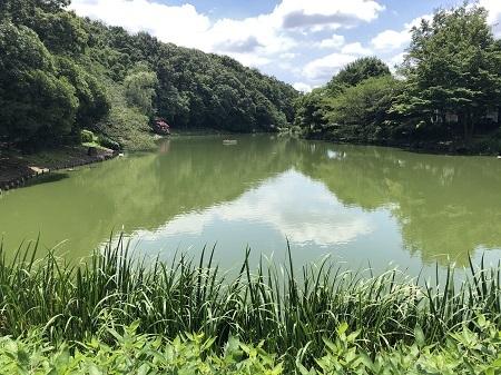ichikawajunsai (2)
