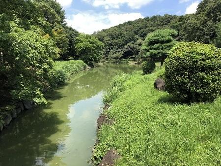 ichikawajunsai (3)