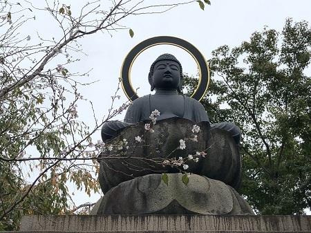toshima11 (10)
