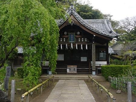 ichikawaguhou (2)