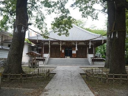 ichikawaguhou (6)
