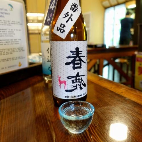 春鹿 今西清兵衛商店 利き酒 (19)