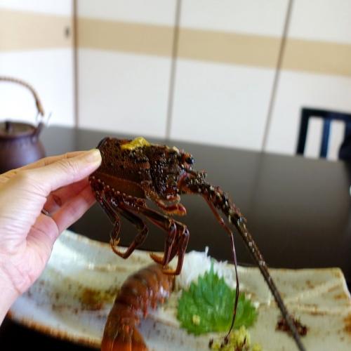 料理旅館 尾川 202010 (45)