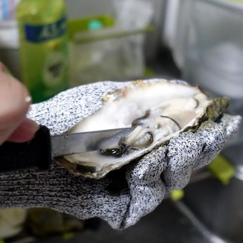 ふるさと納税2021 北海道 北見市 海のミルクサロマ湖産殻付2年物カキ貝 4kg (25~50個入) (20)