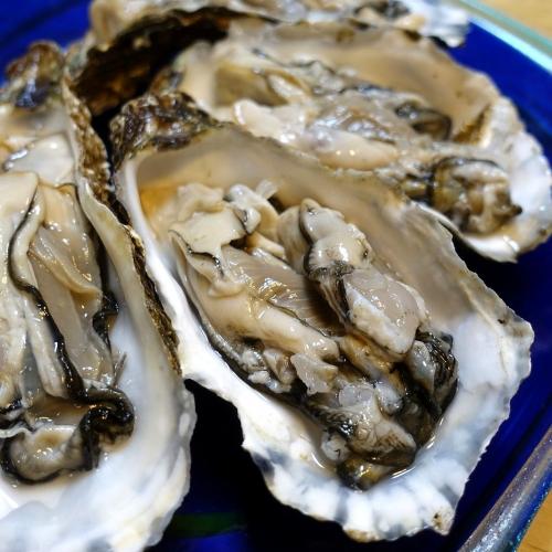 ふるさと納税2021 北海道 北見市 海のミルクサロマ湖産殻付2年物カキ貝 4kg (25~50個入) (5)