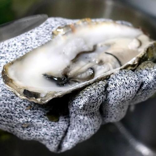 ふるさと納税2021 北海道 北見市 海のミルクサロマ湖産殻付2年物カキ貝 4kg (25~50個入) (21)1
