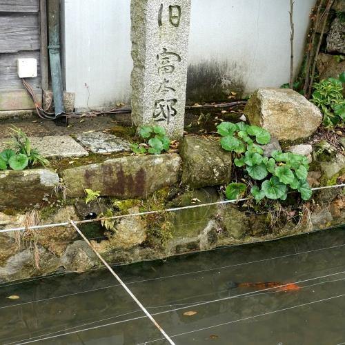 うぶすなの郷 Tomimoto 202103 (7)