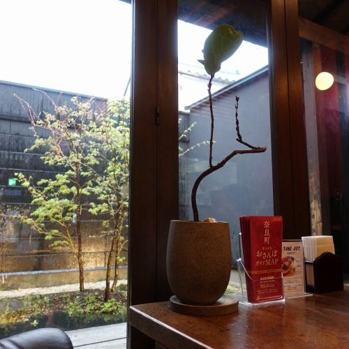 Cafe 春 カフェ ハル (8)