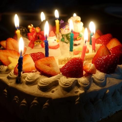 インフィオラーレ 過去ケーキ (19)