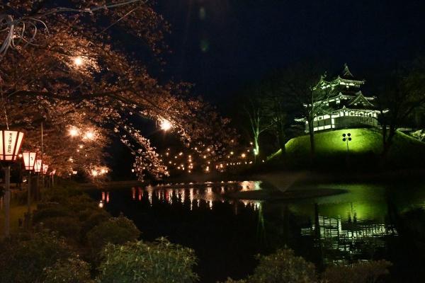 2020-03-31高田城2
