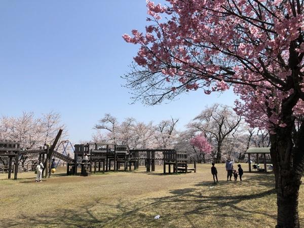 2020-04-04 経塚山1