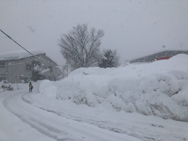 2021-01-08大雪胃
