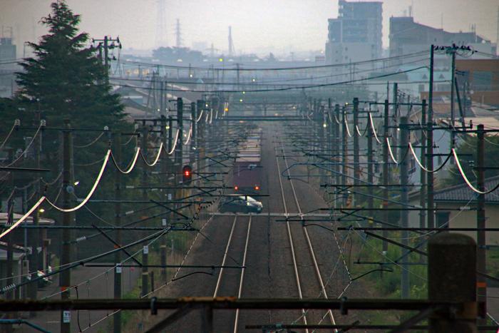 200809-EOS70D-4719-0805.jpg