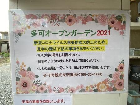2021-04-15_12.jpg