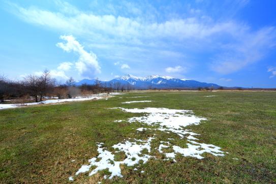 芽吹く野辺山高原の牧草地に残雪と八ヶ岳