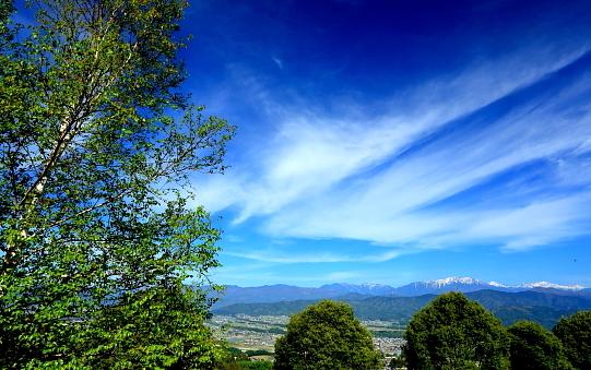 南アルプスを彩る雲と白樺-②