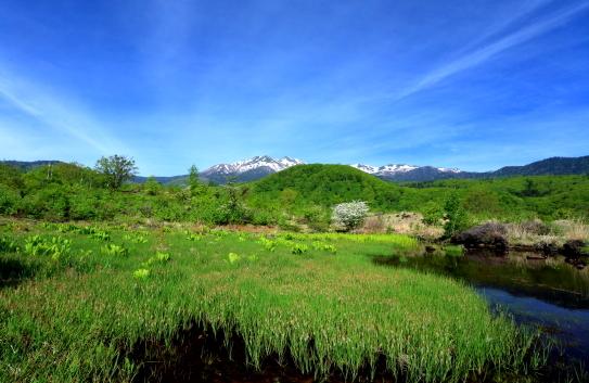 緑色したたる一ノ瀬に映える乗鞍岳と雲