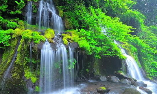 上流から望む雨季の吐龍ノ滝