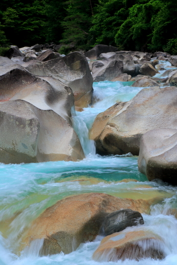 水嵩を増した阿寺川