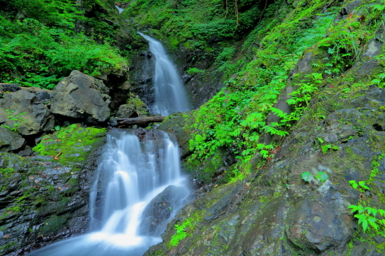 権現山の不動滝
