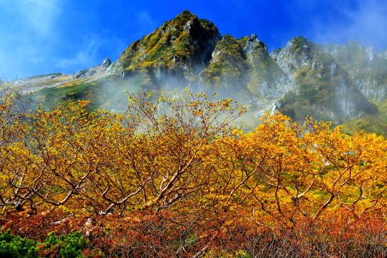 霧に霞む黄葉の岳樺と岩峰