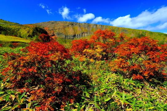 紅葉彩る白根山の爆裂火口壁