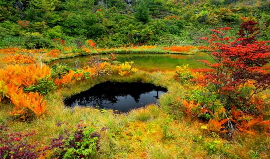 紅葉彩る武貝脱の池