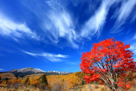 新雪の乗鞍岳と青空の雲