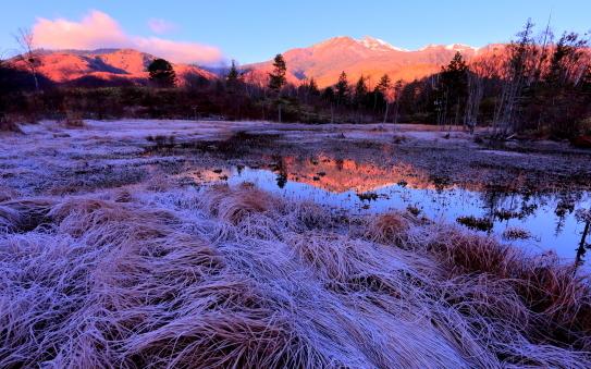 霧氷の池塘に朝焼けの乗鞍岳