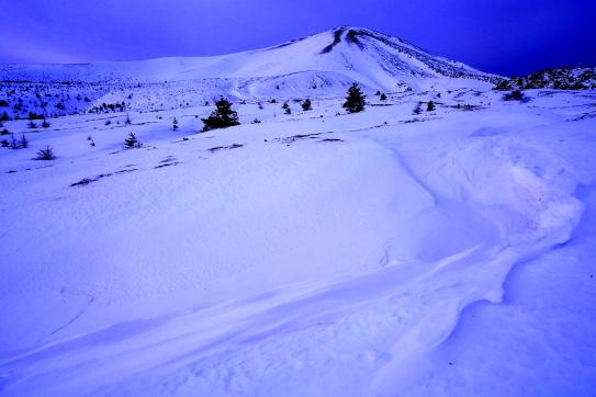 朝焼けの雪原に浮かぶ浅間山