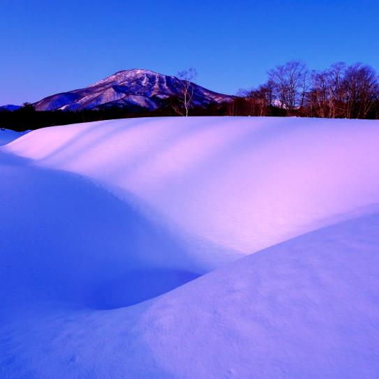 朝の雪原に浮かぶ黒姫山
