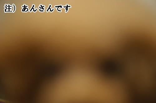 5_20200721141827d26.jpg