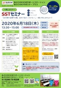 20200618SSTセミナー