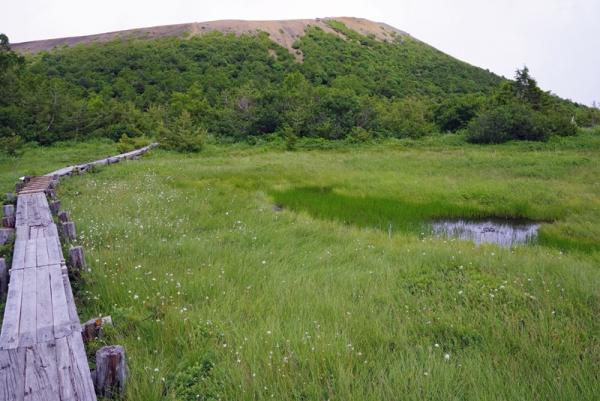 浄土平湿原