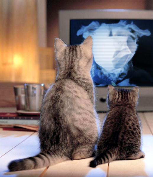 TV-astro