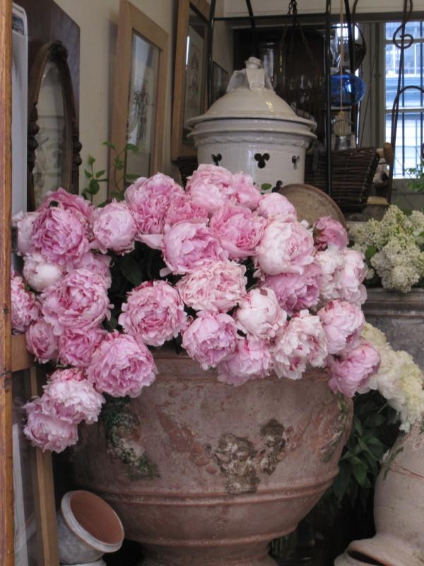 バラの飾りつけ