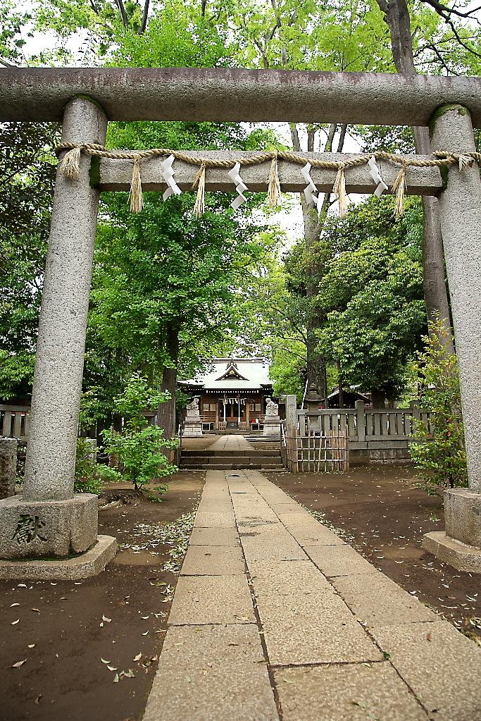 八雲氷川神社(1)_12