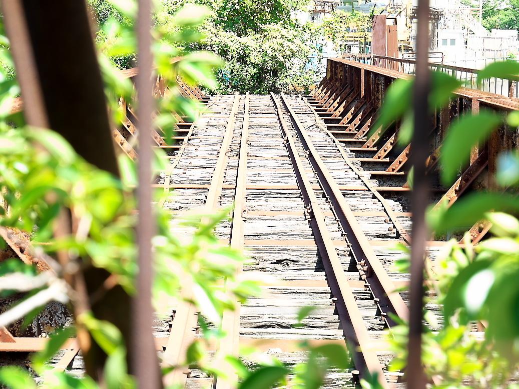 廃止されている鉄橋_2