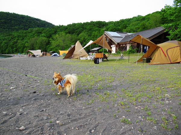 モラップキャンプ場 茶太郎