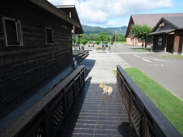 財田キャンプ場 センターハウス 茶太郎
