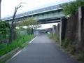200919再び武庫川へ